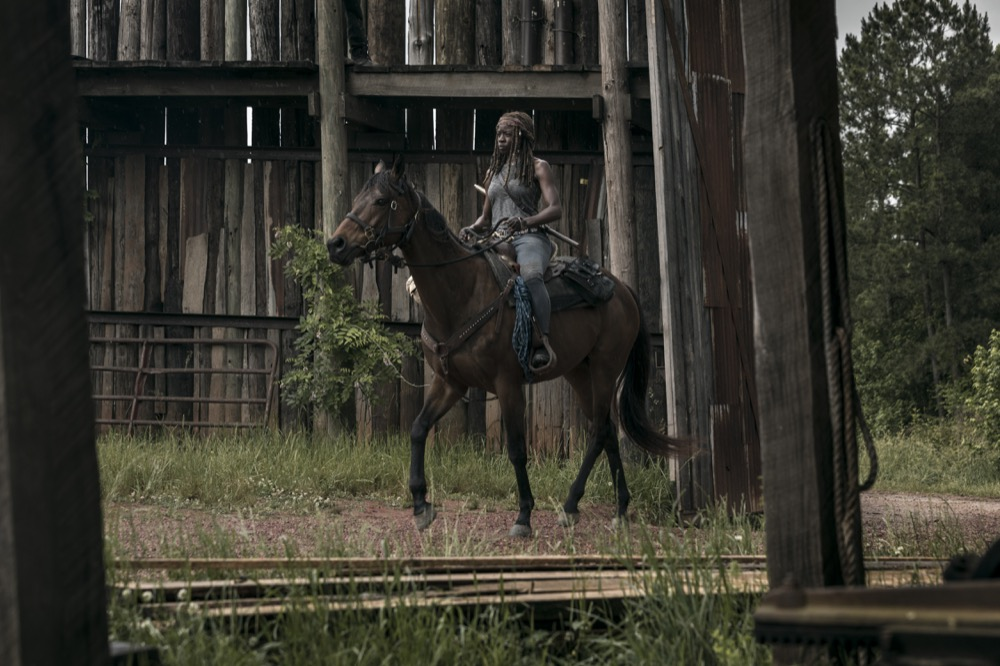 Danai Gurira as Michonne- The Walking Dead _ Season 9, Episode 2 - Photo Credit: Jackson Lee Davis/AMC